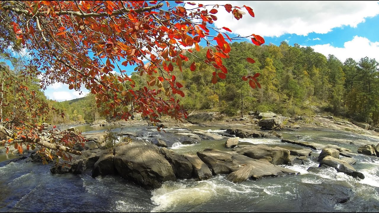 Sweetwater Creek State Park - Yellow, Red, and White Trails