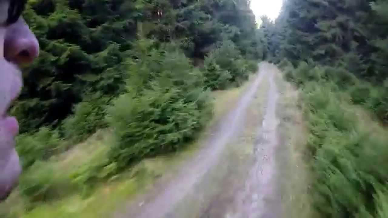 Mtb singletrails harz