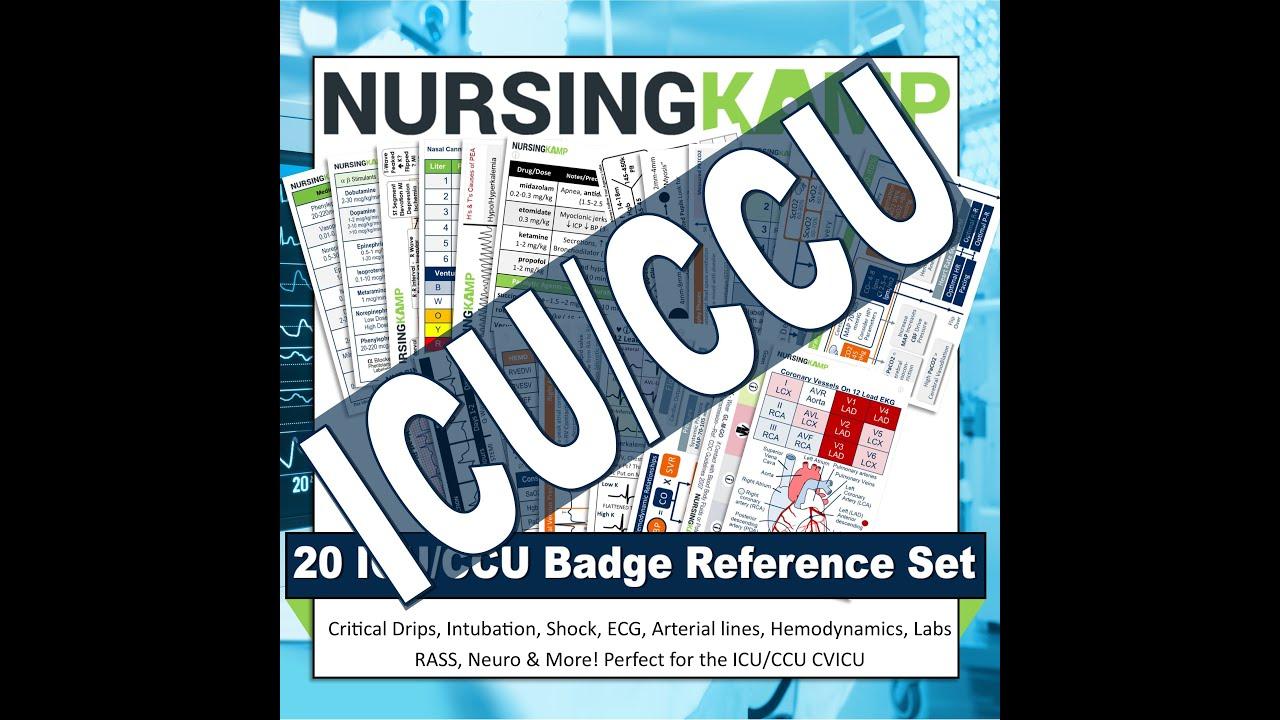 20 ICU CCU CVICU Badge Set Complete!