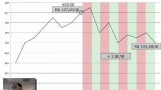 14  Hedge com mercado futuro e opcoes   Fernando Rodrigues   Brasil Hedge