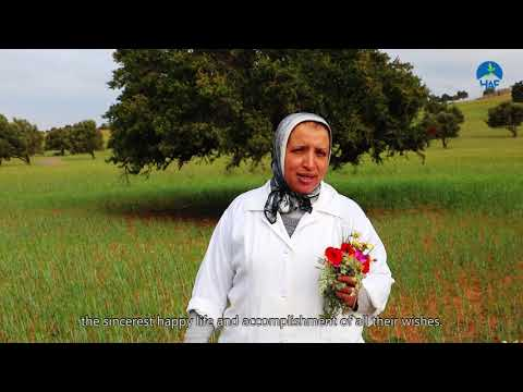 International Women's Day in Essaouira: Argan and Livelihoods