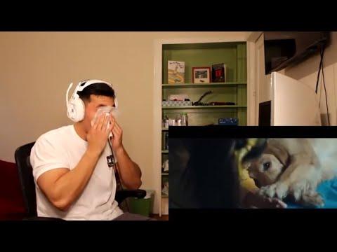 Marshmello Ft. Bastille - Happier (Official Music Video) - REACTION!!