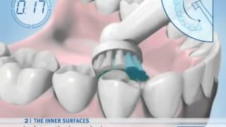 Bàn chải đánh răng điện Oral B - Hướng dẫn sử dụng - www.tiffanystorevn.com