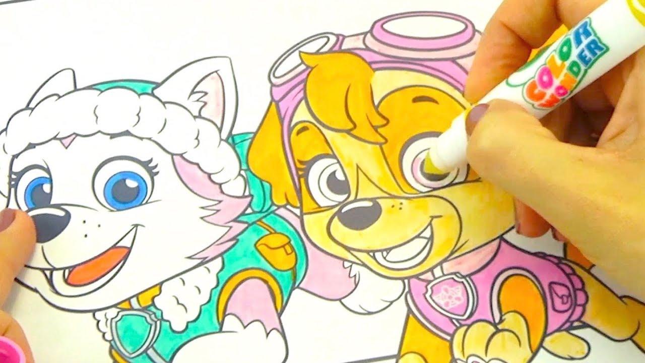 волшебная раскраска щенячий патруль
