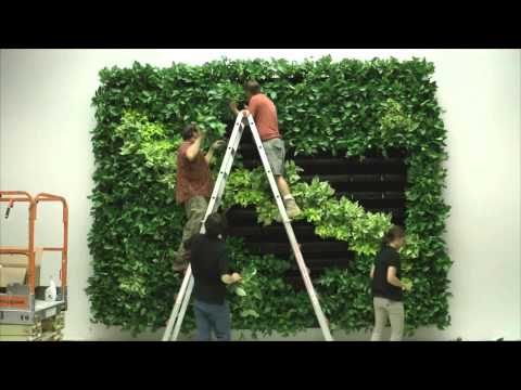 Wall of Life Foliage Designs Systems 2 Living Green Walls