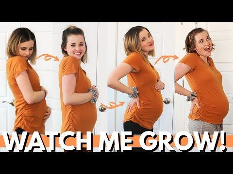 WEEK BY WEEK PREGNANCY PROGRESSION 4 – 20 WEEKS! | 1st Half of Pregnancy Belly Progression