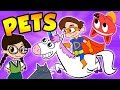All About Pets! - Dogs, Unicorns, Cats, Dragons, & More! | Cool School Compilation