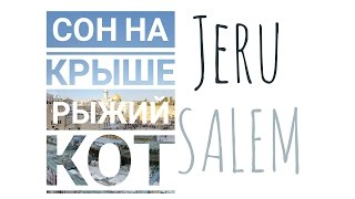 TRAILER: Сон на крыше. Рыжий кот | Jerusalem