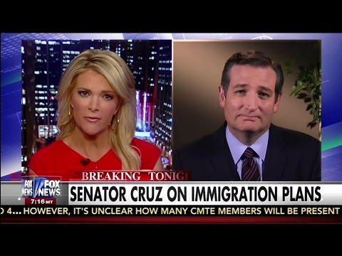 Senator Ted Cruz on Immigration Plans