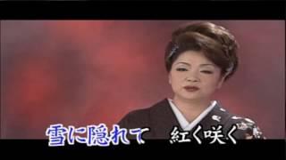 夏木綾子 - 寒椿
