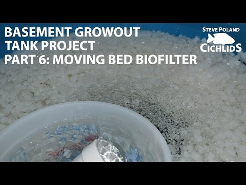 (6 of 8) Basement Growout Tank Project - Moving Bed Biofilter