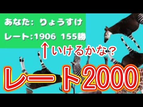 レート2000チャレンジ!ハイレベル!【どうぶつタワーバトル】