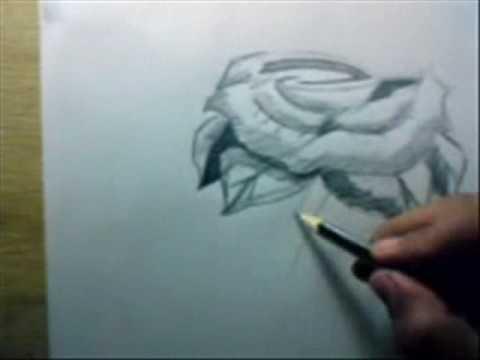 dibujando una rosa luisdavid - YouTube