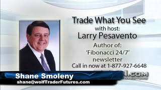 August 12th, Trade What You See with Larry Pesavento on TFNN - 2020