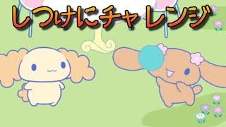 サンリオぽこあぽこ しつけシリーズ「シナモンのみんなともだち」DVD。 ...