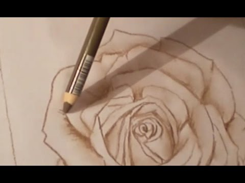 tutoriel n 1 dessiner une rose youtube. Black Bedroom Furniture Sets. Home Design Ideas