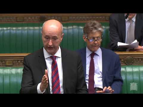 Customs Union Debate - Geraint Davies