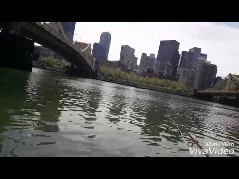 Pittsburgh fly fishing north shore youtube for Fishing in pittsburgh