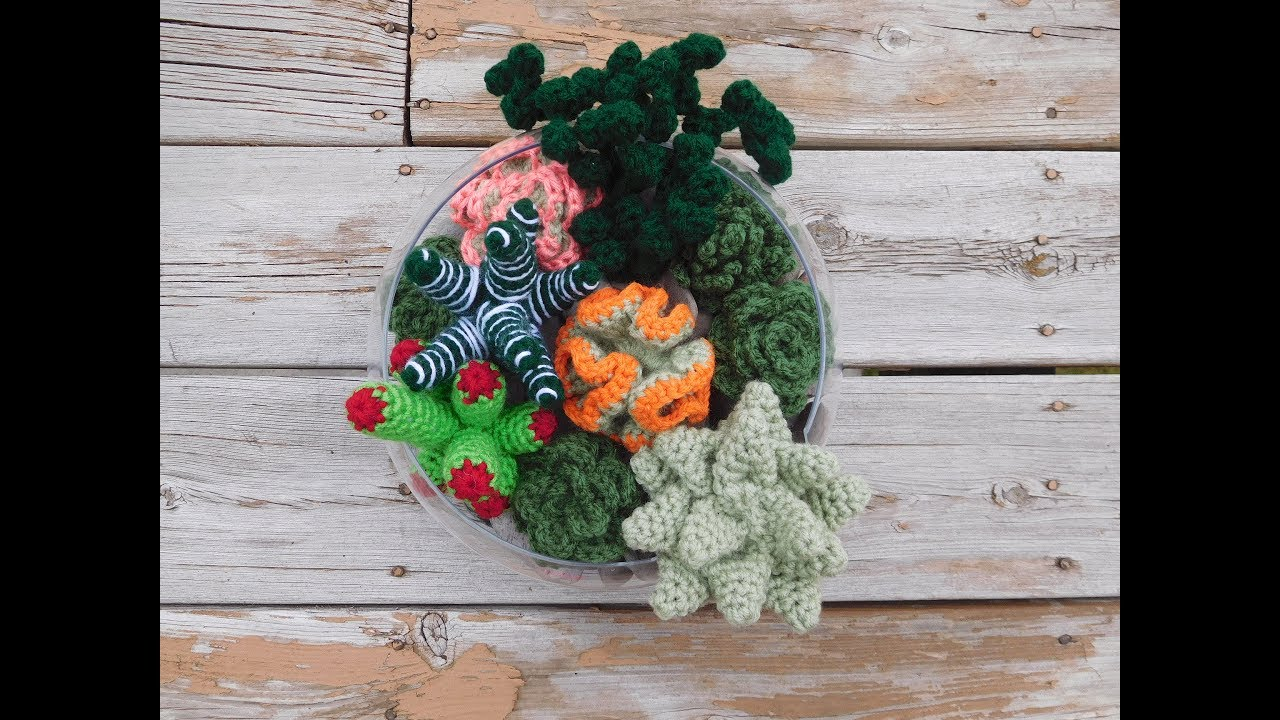 Succulent Collections 1 and 2 - EIGHT crochet patterns ... | 720x1280