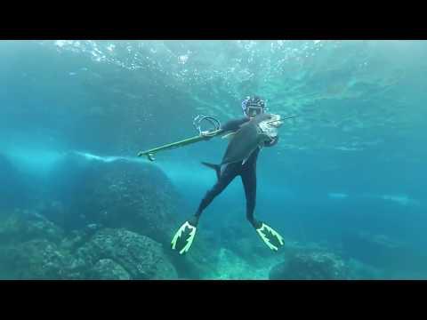 Sabang spearfishing Coral fish Indonesia ACEH/ISCO Di Akhir Tahun 2017