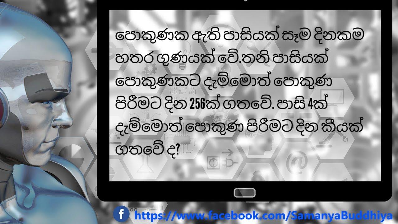 IQ Questions in Sinhala | Samanya Buddhiya | SLAS Help ...