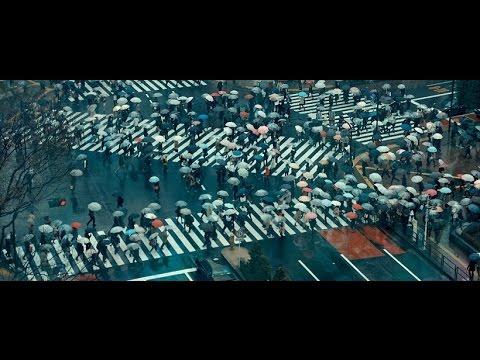 IDFA 2016 | Trailer | Delicate Balance