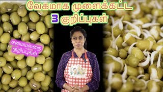 3 Tips for Fast Sprouting - in Tamil | Recipe Links Included