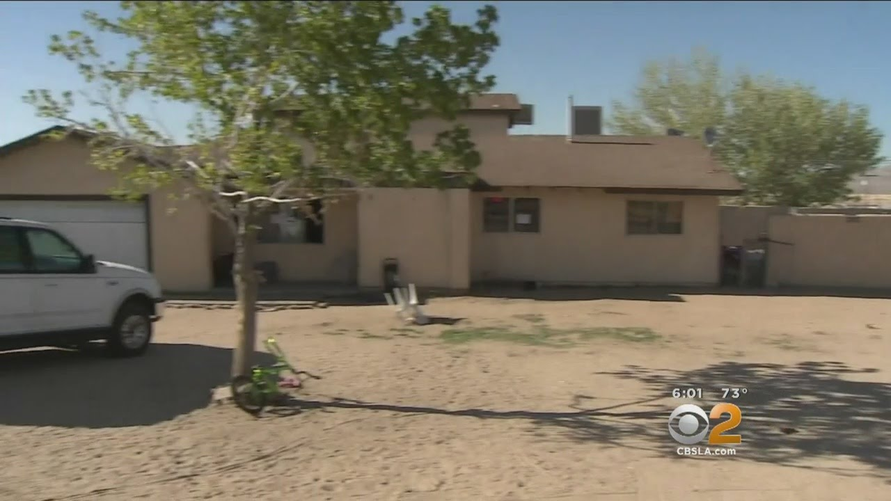 Download 20 Children, 18 Dogs Rescued From Victorville Home Described As 'Uninhabitable'