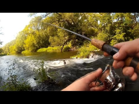 рыбалка видео плавом