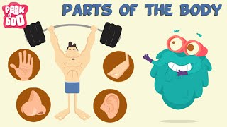 Parts Of The Body | The Dr. Binocs Show | Learn Series For Kids