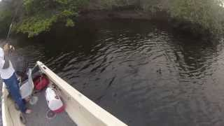 Snook Jack Crevalle and Record Sized Mayan Cichlid! Winter Fishing South Florida