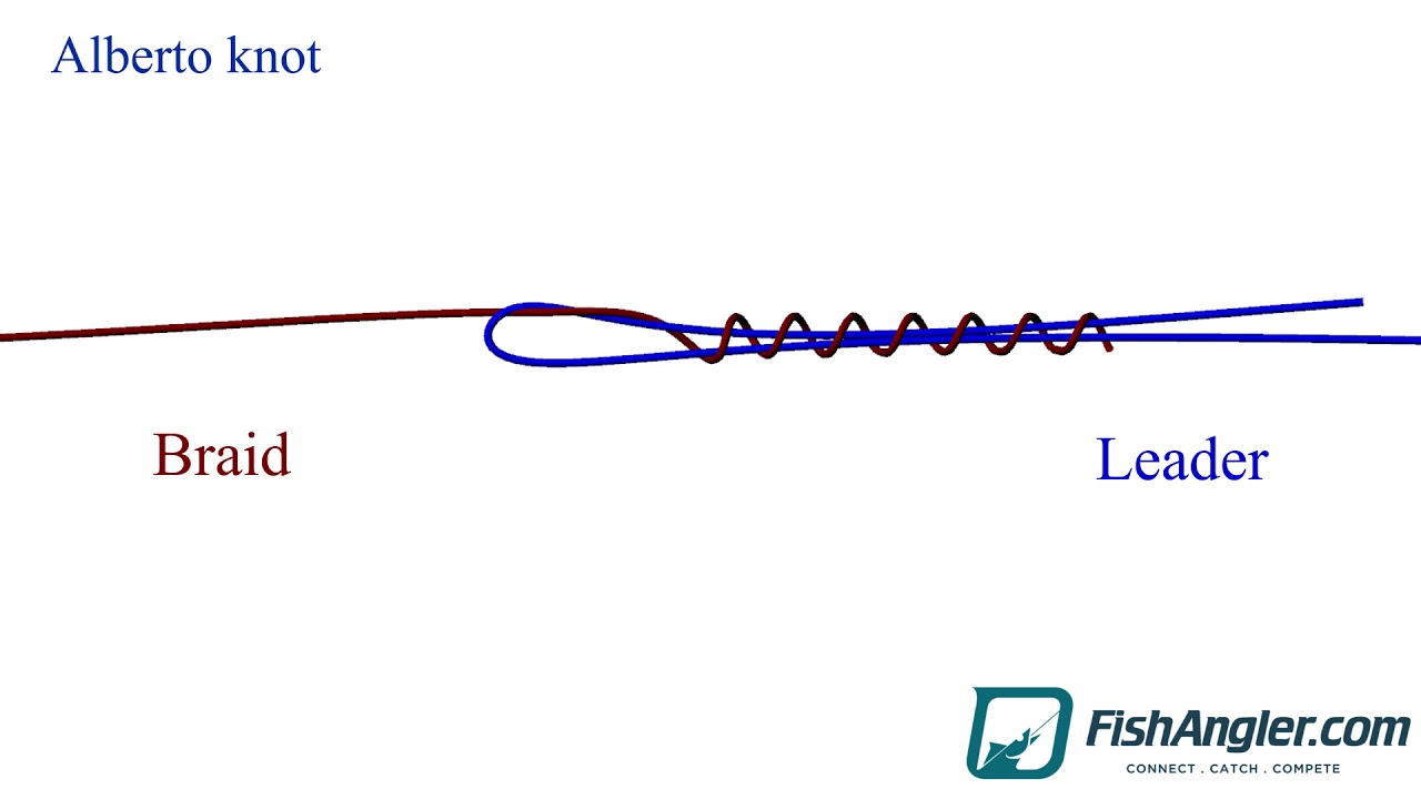 Alberto Knot The Alberto knot is an excellent knot for