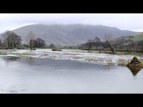Storm Desmond: A British Farm Dealing With the Flood