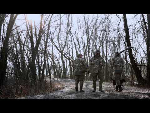 Sitka Films: Waterfowl