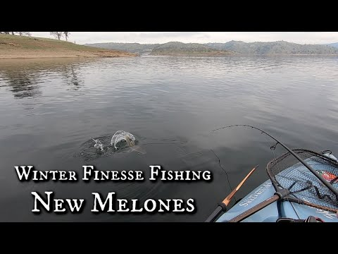 New Melones Winter Finesse Fishing