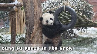 Kung Fu Panda  In The Snow | iPanda