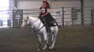 Freestyle Reining - Jewel of The Big Sky