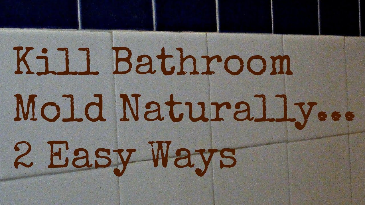how to get rid of bathroom mold naturally 2 ways to kill bathroom mold youtube