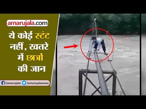 Overflowing Ghaggar River: Students Risk Their Lives To Go School In Himachal Pradesh | Viral Video
