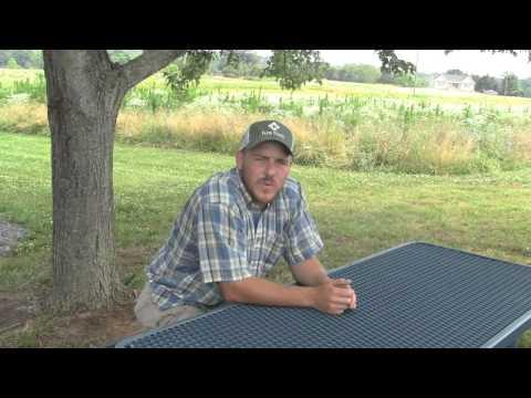 Croushorn Farms (part 1): Starting a new farm enterprise