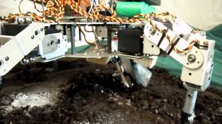 Robotic Farmer: Prospero