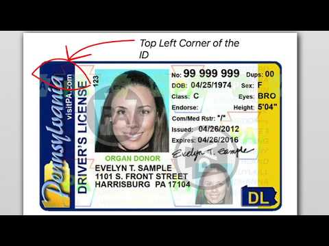 How To Check if a Pennsylvania ID is Fake or Real