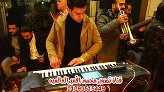 استقبال محمد عبد السلام والنجم احمد شيبه فرحه عريس الفنانين فلونكه الأسكندرية