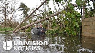 Pérdida total de cosechas, la desgarradora situación en Puerto Rico tras el huracán María