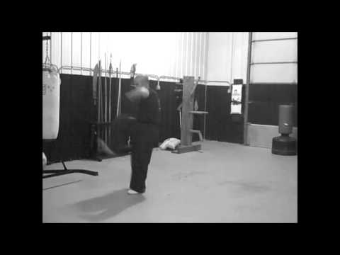 Choy Lay Fut Kung Fu: Hon Cheung Lin Wan Kuen Full Video