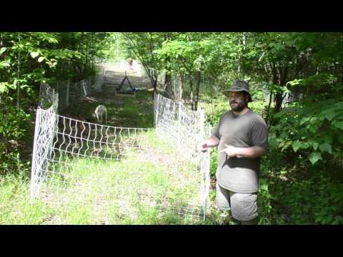 Starting a Rotational Grazing System