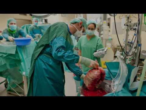 Медицина донорство