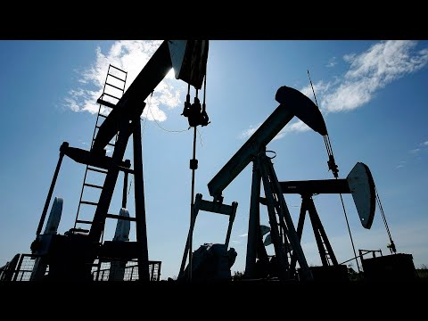 Price of oil plunges in worst drop since Gulf War