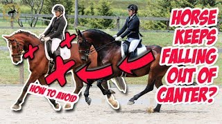 STOP YOUR HORSE FALLING OUT OF CANTER BACK INTO TROT - Dressage Mastery TV Episode 295