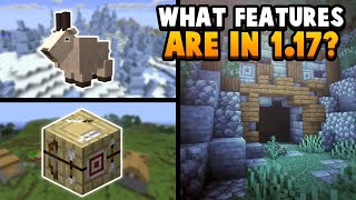 What Features Are Going To Be In Minecraft 1.17?